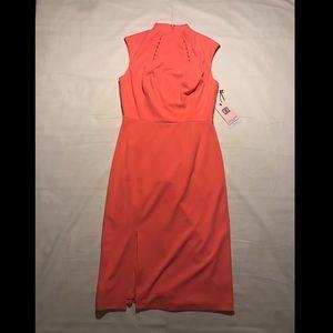NWT Ivanka Trump Dress